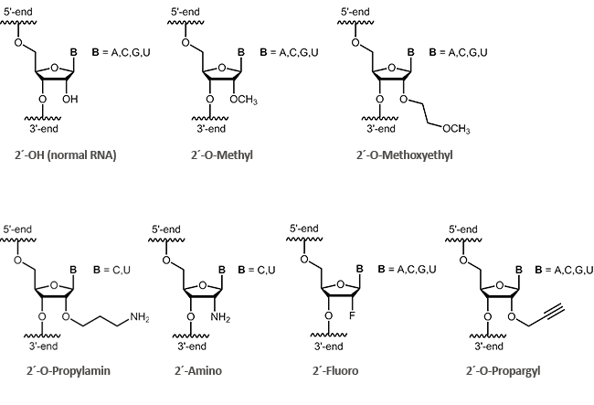 2´-modified RNA